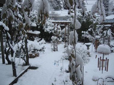 Snowdaygarden03